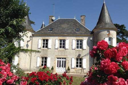 1 B&B Double  in a Château (2) - Le Chillou - Flat