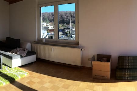 Schöne Wohnung,5 Minuten nach Basel - Apartemen