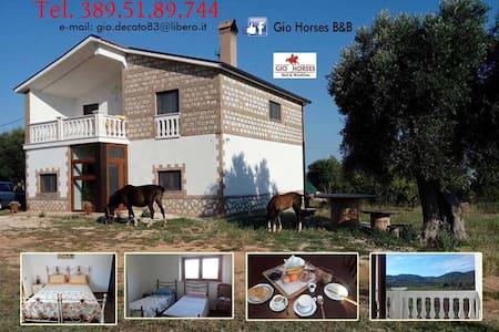 Gio Horses - San Nicandro Garganico - Bed & Breakfast