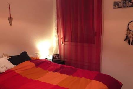 Jolie chambre au centre de Genève - Appartement