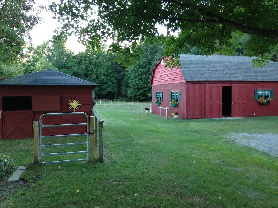 Beautiful private yard with barns and sitting areas to enjoy nature and relax!