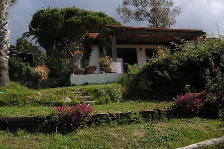 Casa en Paloma Baja ,Tarifa - Haus