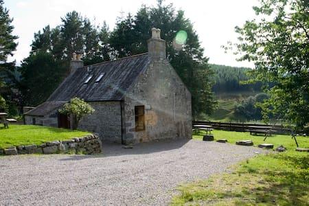 Wild Farm Cottage - Tomintoul - House