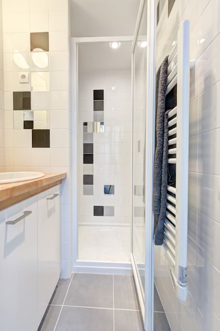 Enjoy a hot or a refreshing shower in this design bathroom