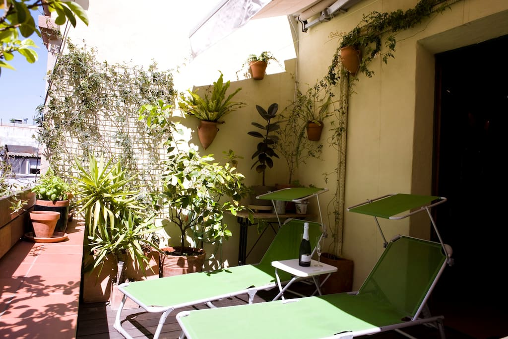 Terrace can be shaded or sunny with fully automated awning