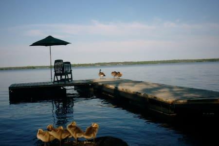 Beautiful Lake Front Cottage - Brereton Lake - Chalet
