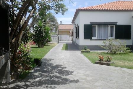 Moradia T3 com jardim (costa norte) - Casa