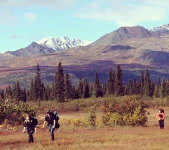 Alaska - a scenic remote bush cabin - Talkeetna - Cottage