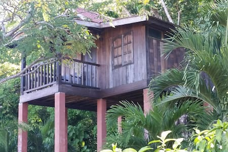 Foxhill Tree Top - A view of nature - Maison