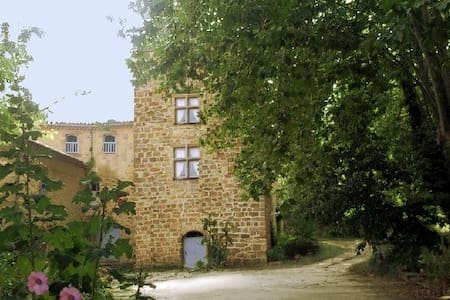 Cathare Land, Manor of Castillou