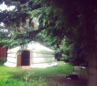 Yurt on quiet camping in the Woods - Beekbergen - Yourte
