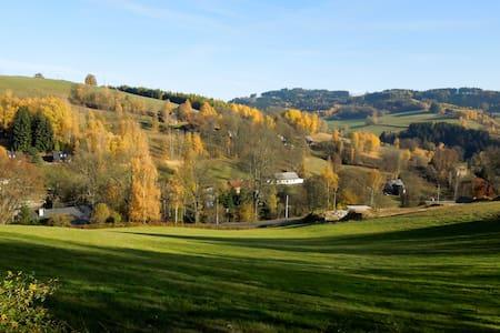 apartmán na rozhraní Jizerských hor a Krkonoš - Zlatá Olešnice - Apartmen