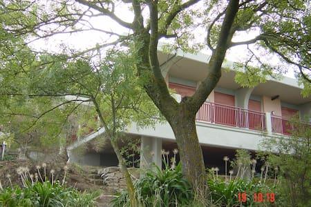 Splendida Villa immersa nel verde - Cefalù