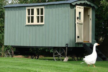 Somerset Shepherd's Hut Holidays  - Mark - Barraca