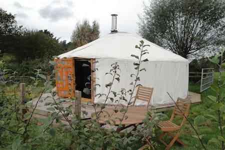 Authentic Mongolian Yurt near Wye - Fownhope - Tenda