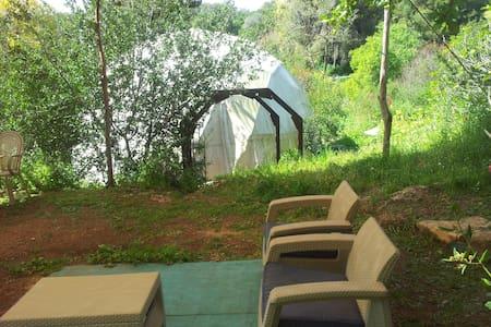 Beit Keshet Forest - Mt Tabor dome - Jurta