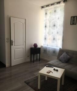Studio renové 5 min centre ville - Dijon - Apartment
