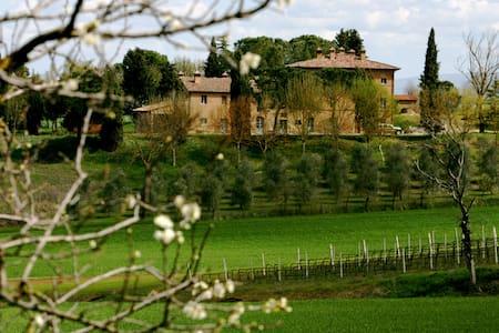 Warm, huge, Umbrian country aprtmt  - Villa