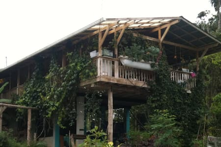 Sustainable FarmHouse in CostaRica1