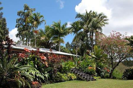 World Class Hawaiian Vacation Home - House