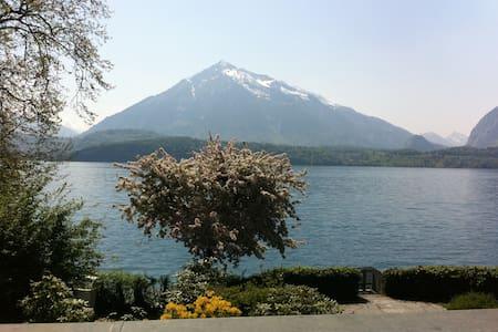 Villa on shore of Lake of Thun - Hus