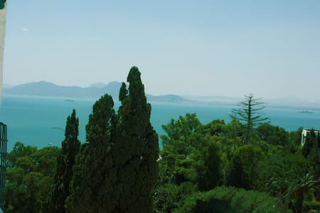 sidi bou said chambre jasmin  - Bed & Breakfast