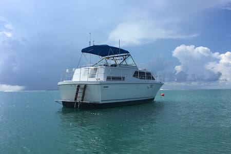Spacious private BOAT nature sunset - Barco