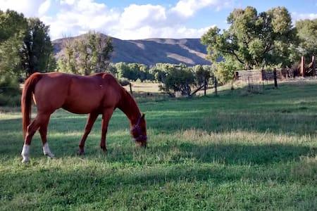 Historic Ranch House and Barn  - Savery - Maison