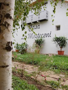 Country Club La Mesteceni - Răhău - Apartment