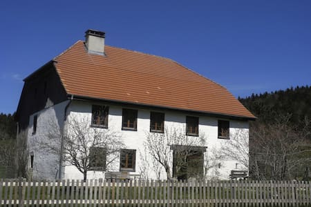 Spacious historic farmhouse - Saicourt - House