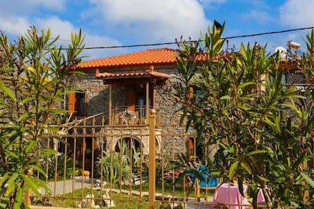 Melanthia Beachfront House - Huis