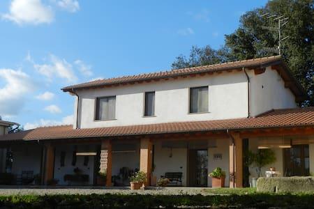 Le Sorgenti - Room Mandela - Civitella Paganico - Apartemen