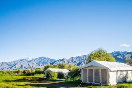 Luna Eco Camp - (Leh Ladakh) - Tenda