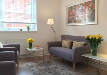 Cozy Central 1 Bedroom Flat - London - Apartment
