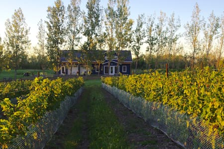 A Vineyard Cottage at Broken Stone Winery - Sommerhus/hytte