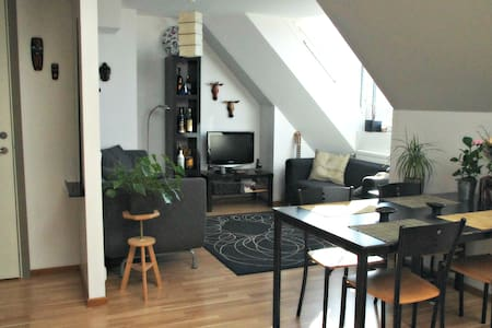 Exclusive penthouse in central Lund - Lund