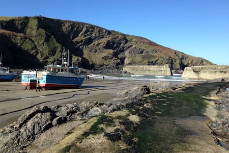 Terrace Tea Rooms & Bed & Breakfast - Port Isaac