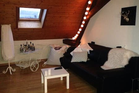 Charming attic with beautiful view! - Liestal - Appartement