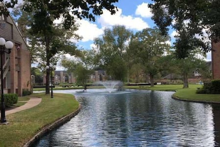 Romantic and quiet lakeside apartments - 休斯顿 - 公寓