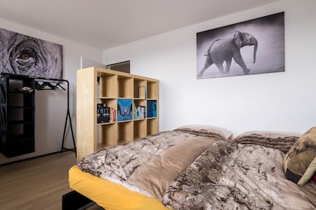 Sleeping with Elephants - Appartement