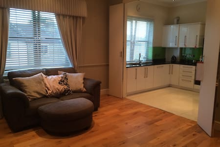 Comfortable double ensuite in spacious apartment - Apartment