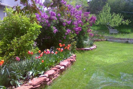 Cozy Gardens & Mountain Views 5 minutes from town. - Casa