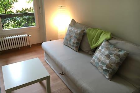 Lumineux deux pièces à Sion - Appartamento