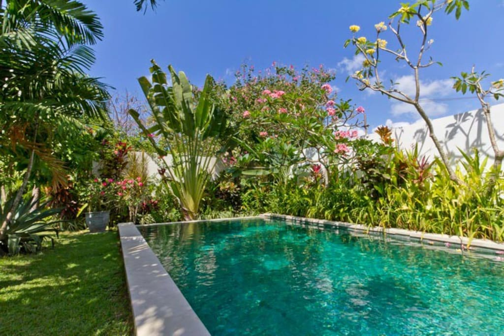 Tropical AMBIENCE 3BR quite CANGGU