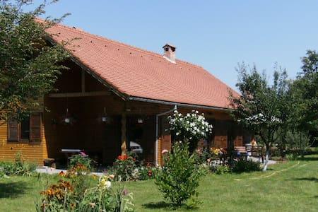 Grande Cabane dans les Carpates,  - Avrig - Cabanya
