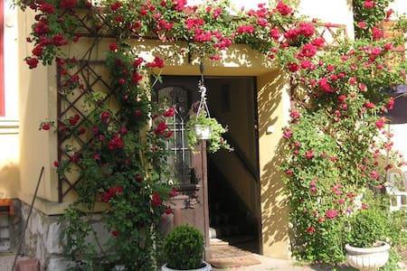 Ferienwohnung in Velden/Ws zentral - Villa