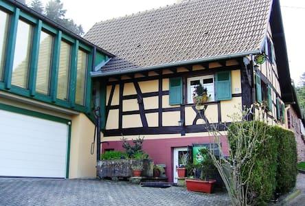 Maison alsacienne 4* avec jardin - House