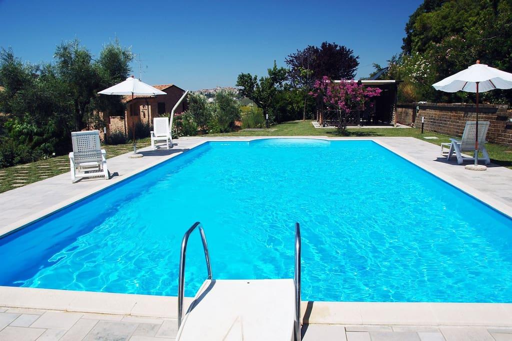 All'esterno della villa si trova una piscina scoperta con ampio gazebo attrezzata con lettini ed ombrelloni, doccia e bagno esterno.