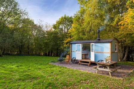 Wild woodland retreat shepherds hut - Elham