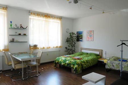 Studio-apartment in good location - Apartment